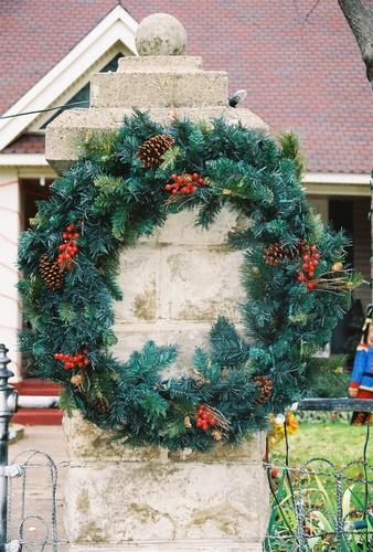 dwayne-christmas16.jpg